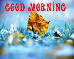 3d Good Morning Images Photo Pics Picture Wallpaper Download Share Good Morning Images Morning Images Free Good Morning Images