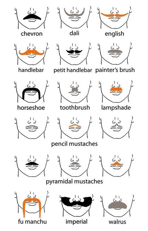 Brilliant Types Of Mustaches Mustache Styles Types Of Mustaches Pencil Schematic Wiring Diagrams Amerangerunnerswayorg