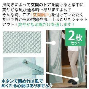 玄関網戸 網戸ネット 防虫カーテン 2セット 虫除け 網戸 カーテン
