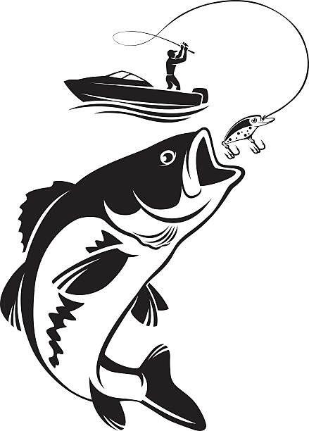 3,669 Bass Fishing Illustrations & Clip Art - iStock