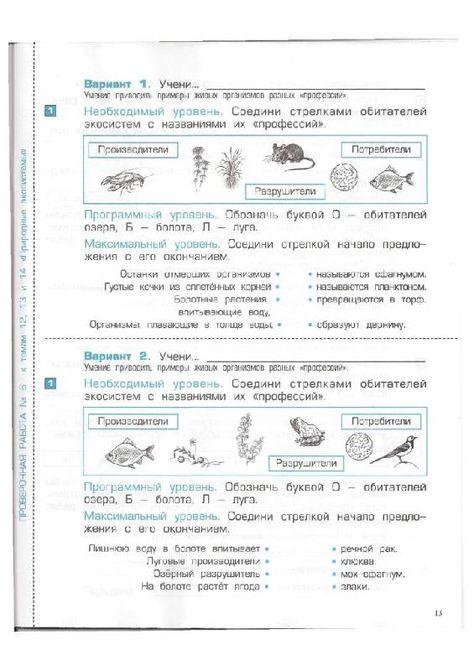 русский язык вариант 1 10 класс