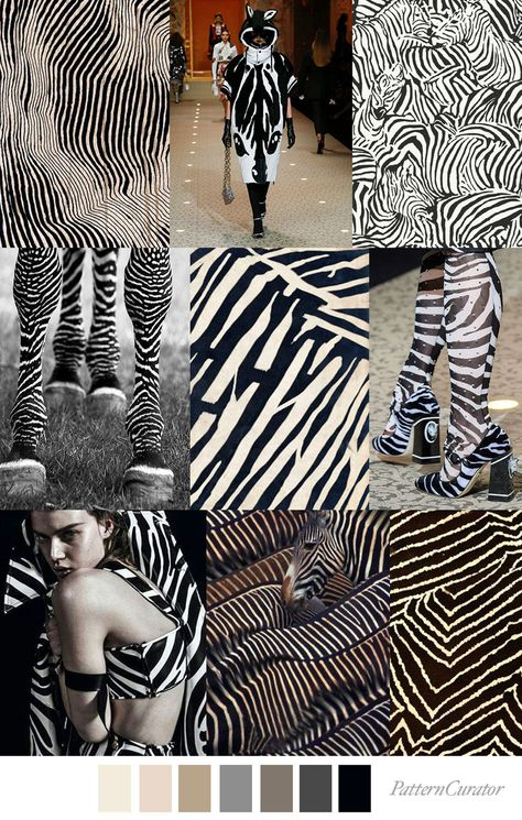 ZEBRA LINES - color, print & pattern trend inspiration for FW 2019 by Pattern Curator. Pattern Curator is a trend service for color, print and pattern inspiration.