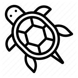 Tortoises Icon Amphibians In Pets Tortoise Turtle Frog Drawing