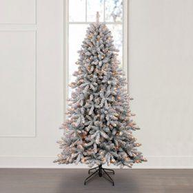 Member S Mark 7 5 Aspen Pine Flocked Christmas Tree Sam S Club Flocked Christmas Trees Christmas Tree Sale Diy Felt Christmas Tree