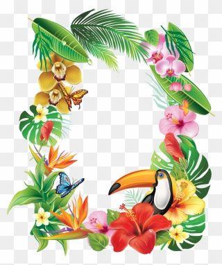 Frame Tropical Flower Tropical Flower Frame Png Clipart Tropical Frames Flower Frame Png Tropical Flowers