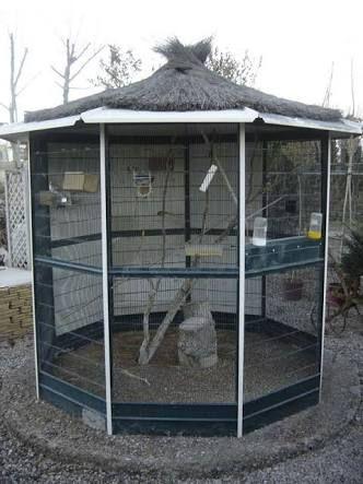 jaulas para aves - Buscar con Google