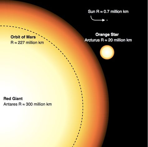 """Comparison between the Sun, Arcturus (a red giant) and Antares (a red supergiant). Mona Evans""""How Big Are the Biggest Stars"""" http://www.bellaonline.com/articles/art300366.asp"""