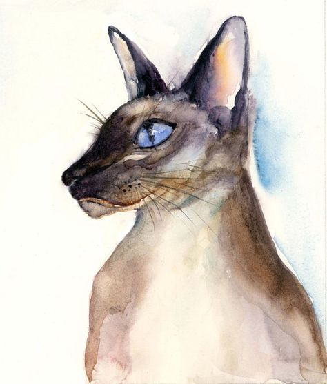 Giclee PRINT Applehead Siamese Cat Art Painting mdmsiamese Seal Chocolate Point