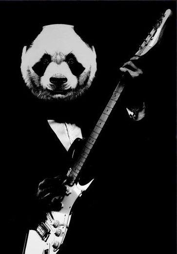 ☆ Rock Panda.。Art By :→: RUSS ☆ | Panda art, Panda drawing ...