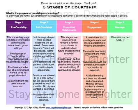 Stages in courtship