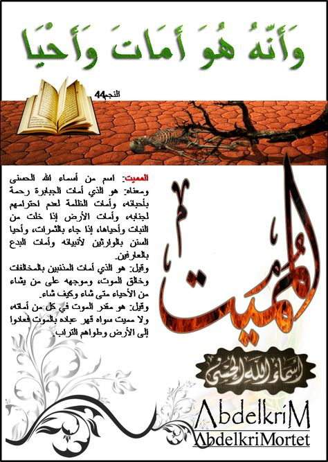 و ل ل ه الأ س م اء ال ح س ن ى ف اد ع وه ب ه ا اسم الله المميت Arabic Calligraphy