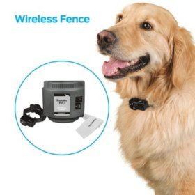 Premier Pet Wireless Fence With Up To 1 2 Acre Circular Boundary Sam S Club In 2020 Pet Area Pets Pet Gate