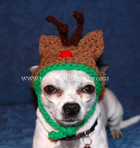 af234a2557b Christmas Dog Hats- Medium - large Dogs - Reindeer