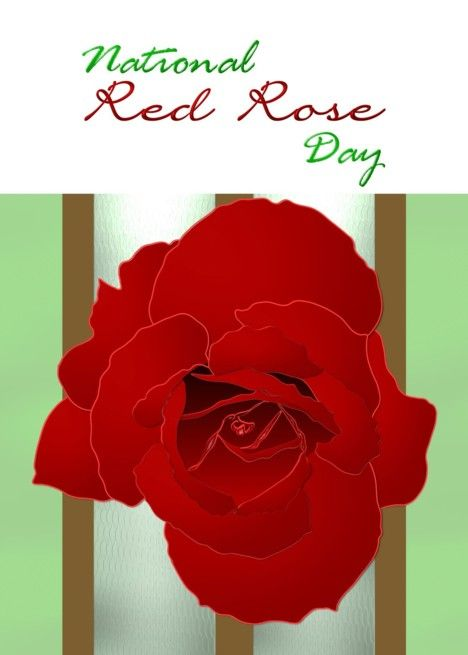 National Red Rose Day June 12 Beautiful Rose Card With Images