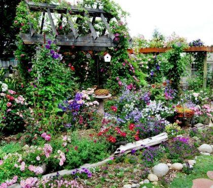 Quelles Especes De Plantes D Ombre Cultiver Dans Nos Jardins Bordure De Jardin En Pierre Bordure Jardin Jardins De Cottage Anglais