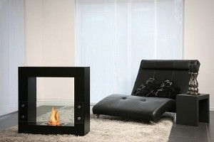 Ethanol Free Standing Fireplace Standing Fireplace Home