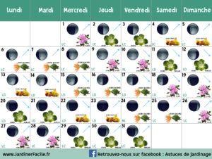 Calendrier Lunaire Pour Jardiner Avec La Lune Calendrier
