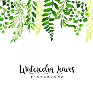 Watercolor Leaves Multipurpose Background Watercolor Summer