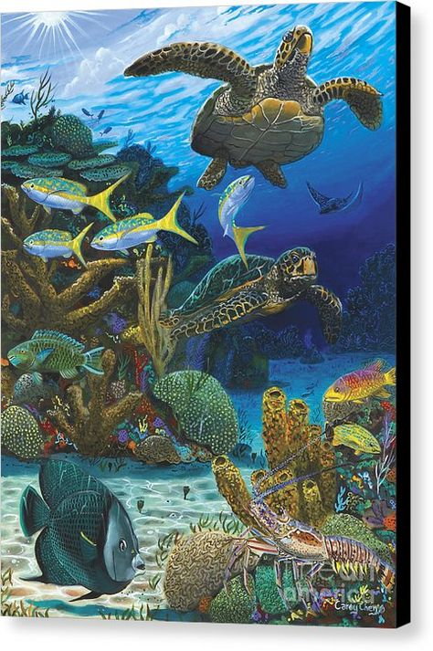 Turtle Canvas Print featuring the painting Cayman Turtles Re0010 by Carey Chen