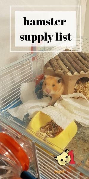 10 Things To Get For Your Hamster Essential Supply List So You Re Off To Get Yourself A Hamster Great I Wish You Two Al Hamster Food Hamster Care Hamster