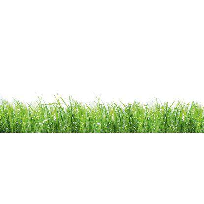 Kuchenruckwand 60 Cm X 200 Cm Alu Dibond Drops On Green Gras Kuchenruckwand Gras Kuche