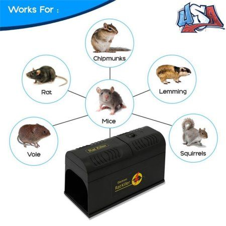 Household Essentials Pest Control Rat Traps Rats