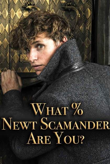 Fantastic Beasts Quiz What Newt Scamander Are You Fantastic Beasts Quiz Newt Scamander Fantastic Beasts