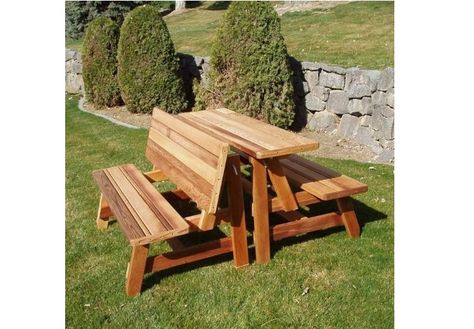 Groovy Folding Bench And Picnic Table Combo Free Plans Ibusinesslaw Wood Chair Design Ideas Ibusinesslaworg