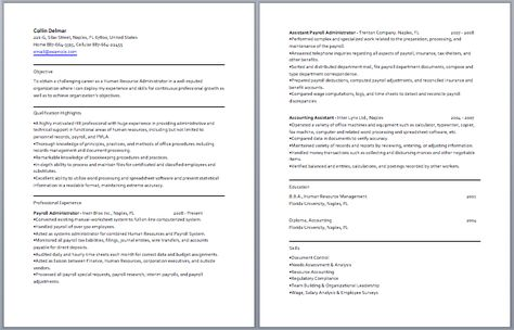 Chartered Accountant Resume Accounting Resume Samples - accountant resume