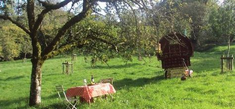 Pippin Cleave Farm Devon A Beautifully Painted Gypsy Caravan With Hot Tub In Secluded And Spot By An Orchard