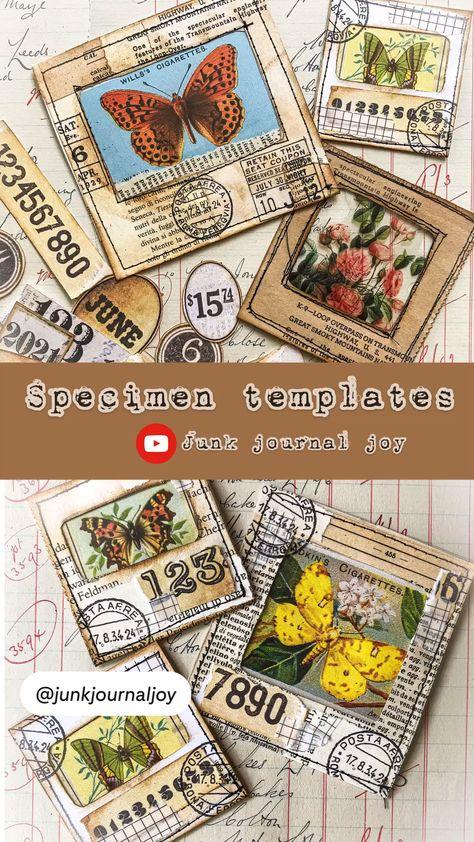 Specimen templates tutorial