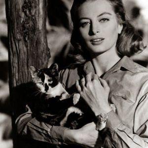 Famous Cat Lovers Actors Actresses Movie Celebrities Cat Lovers Cat People Celebrities With Cats