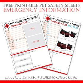Dalmatian Diy Free Emergency Pet Information Sheet Printables Pet Emergency Pet Emergency Preparedness Emergency Plan