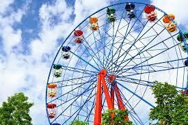 Image Result For Fair Wheel Ride Giant Ferris Wheel Amusement Park Amusement Park Rides