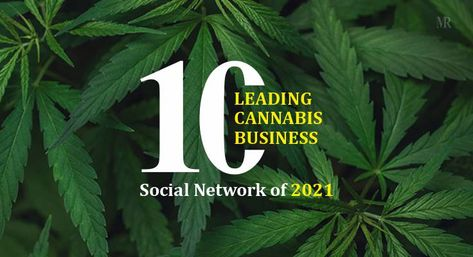 10 Leading cannabis business social network of 2021