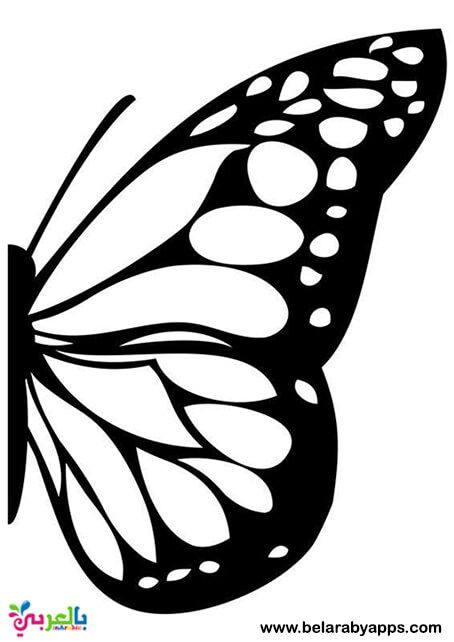 Image Result For Butterfly Stencil Pattern Butterfly Stencil