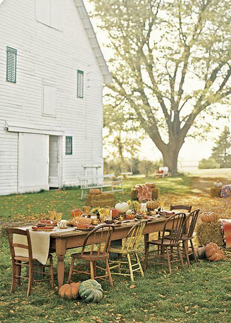 Thanksgiving Feast...