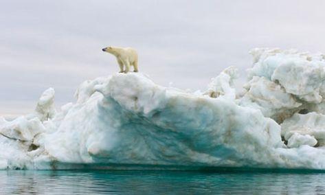 Arctic methane catastrophe scenario is based on new empirical observations Arctic methane catastrophe scenario is based on new empirical observations