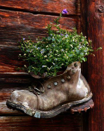 Hardy Zones Definition Lest Gardening Tools Target Mit Bildern Gartendekor Pflanzideen Gartencontainer