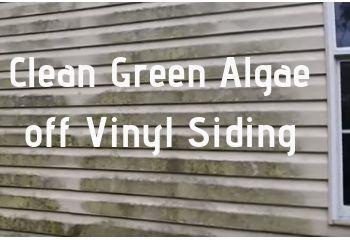 Clean Green Algae Off Vinyl Siding Fast And Easy Home Maintenance Tips And Advi Advi Algae Clean Easy Fast Green Home Homema Reinigen Vinyl Tipps