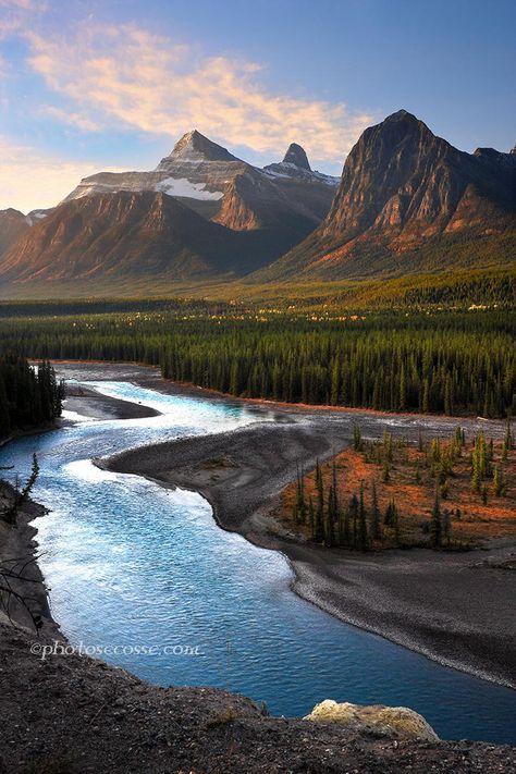 The Athabasca River, near Sunwapta Falls, Icefields Parkway National Park, Alberta. Canada.