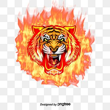 Vector Fire Tiger Head Tiger Head Flame Png Transparent Clipart Image And Psd File For Free Download Silhouette Painting Cat Vector Tiger Head Tattoo