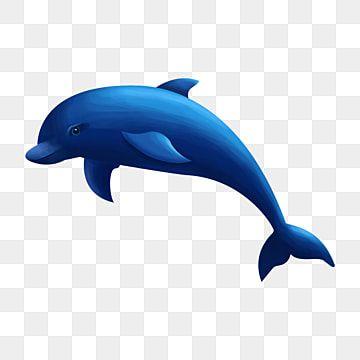 Miami Dolphins Alternate Logo 1997 2012 Miami Dolphins Logo Dolphins Logo Miami Dolphins Wallpaper