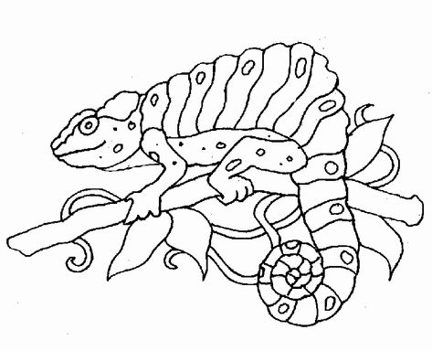Zoo Animals Coloring Pages In 2020 Zoo Animal Coloring Pages Monster Coloring Pages Animal Coloring Pages