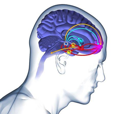 La dopamina è un ormone legato al senso di soddisfazione ed appagamento personale e ci può spiegare il perchè del cibo vissuto come ripiego emozionale.