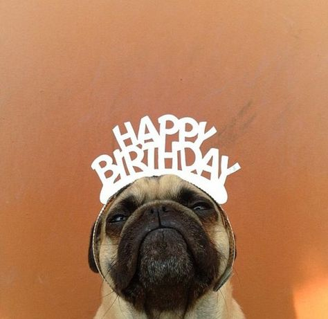 Anniversaire Geburtstag Birthday Happybirthday