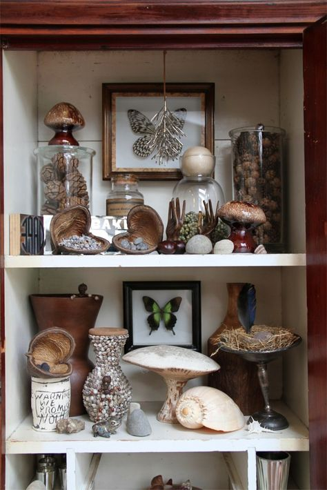 Amy butler house curio (AT* Tour) Deco Nature, Nature Decor, Tables Tableaux, Butler House, Decoration Shabby, Cabinet Of Curiosities, Natural Curiosities, Creative Textiles, Creative Walls
