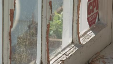 Squirrel Damages Home Insurance Company Refuses To Pay In 2020