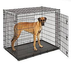 Best Extra Large Dog Crates For Giant Breeds That Are Big Heavy Extra Large Dog Crate Large Dog Crate Xxl Dog Crate