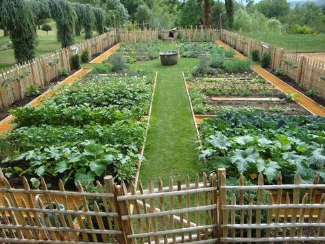 Potager Garden Most Popular Kitchen Garden Design Ideas 39 - Farm Gardens, Outdoor Gardens, Indoor Garden, Potager Garden, Fenced Garden, Garden Plants, Picket Fence Garden, Garden Mulch, Garden Stairs